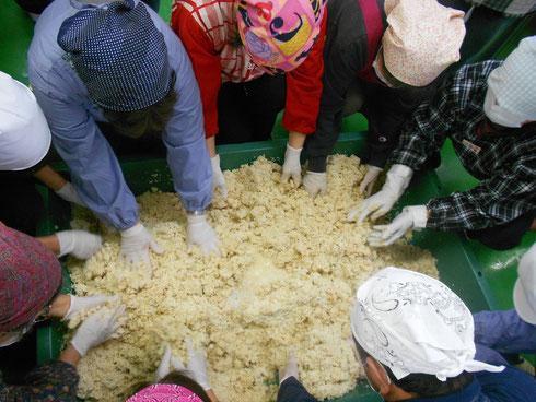 大豆が冷えたら、上にほぐしておいた麹と塩を乗せて、冷ました大豆の煮汁を加えて、耳たぶくらいの硬さに混ぜ合わせる。この時、水は一度に入れず硬さを見ながら少しずつ加える(柔らかすぎるとたまりが多く、硬すぎると麹の発酵が進まない)