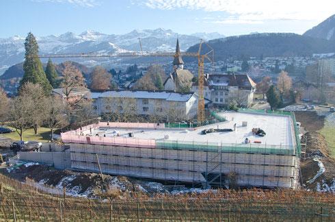 18. Dez. 2013 – Das Aufrichtetännchen steht (rechts hinten)!