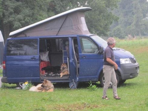 die Hunde haben sich gut an das Nomadenleben gewöhnt