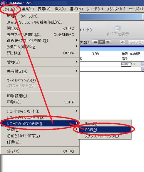FM 12 による PDF 出力