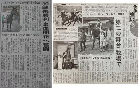 左:中日新聞(2013年5月25日付) 右:上毛新聞(2013年5月30日付)