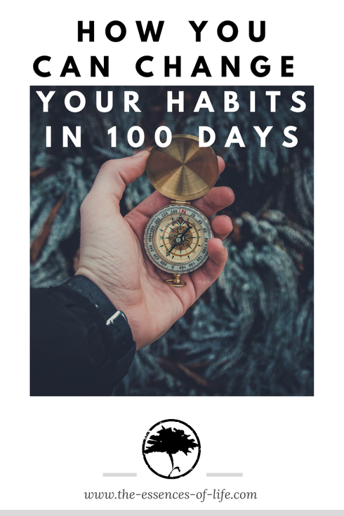 Habits change 100 days decision compass