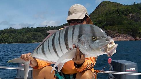 seychelles spin fishing - Seychelles fishing - reports
