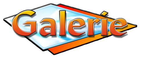 Kellnergeldbeutel, Kellnergeldbörse Kaiser Tracht Galerie, Geldtaschen, Geldbeutel, Lumpentaschen, Gürtel, Ranzen, Unikate, Exklusiv, Bedienung, Kellner