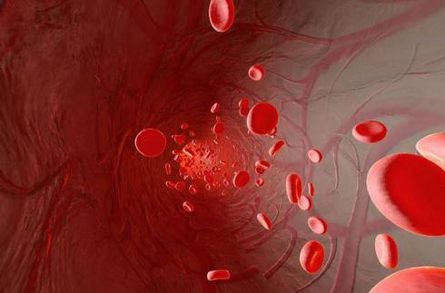德国血液净化疗法 HELP DALI DFPP 双模二重过滤血浆交换 INUS 德国欧亚商旅