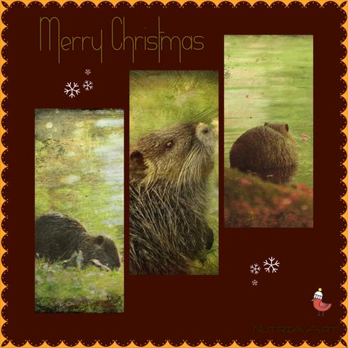 nutria weihnachtskarte