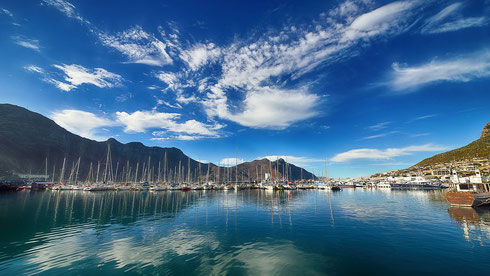 Duiker Island  Südafrika