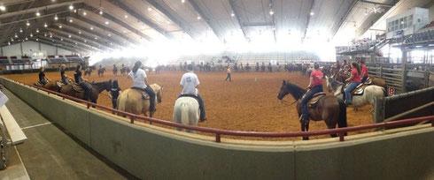 Horsemanship-Clinic