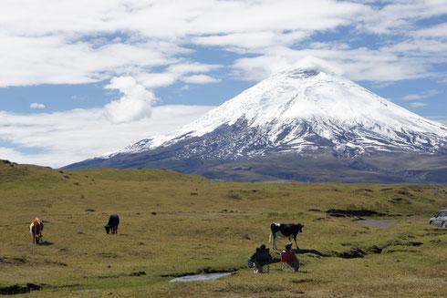 Wandern, Reiten  oder Fahrradfahren beim Nationalpark Cotpaxi mit ECUADORline
