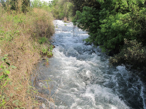 Dan stream