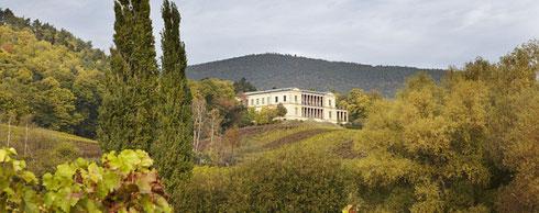 Rund um Schloss Villa Ludwigshöhe, im Moment wegen Umbauarbeiten leider geschlossen, steht der größte Kastanienwald Deutschlands.