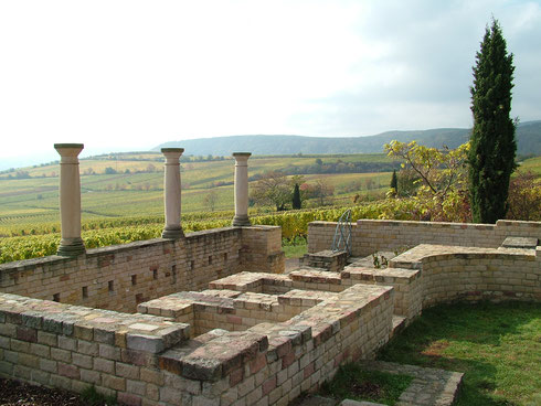 In imposanter Lage errichteten die Römer ein Weingut von stattlichen Ausmaßen. Der Blick schweift über die Reben des Weilberg weit bis in die Rheinebene und zum Pfälzerwald. Foto: Stadt Bad Dürkheim