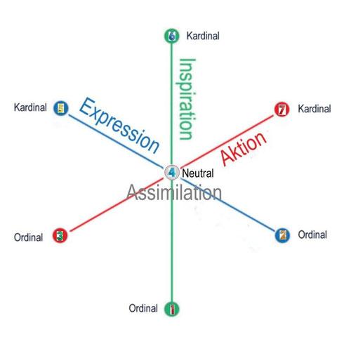 Strukturmodel der Merkmale der Matrix, (Klicken zum vergrößern)