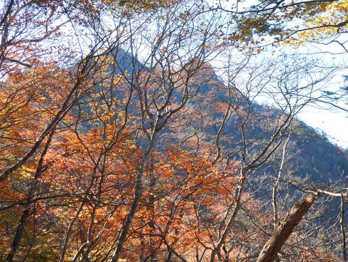手前鞍部から眺める諏訪山本峰