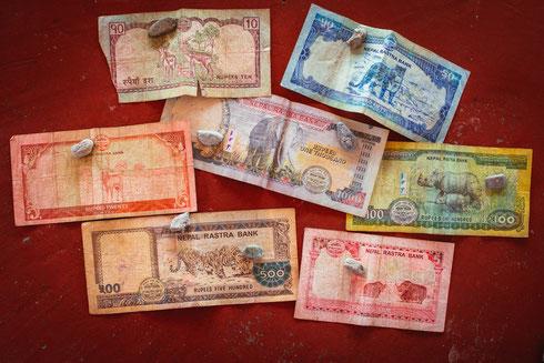 Die vielleicht schönsten Geldscheine der Welt. Mit all den besonderen Tieren des Landes. Und auf allen Rückseiten thront der Mount Everest.
