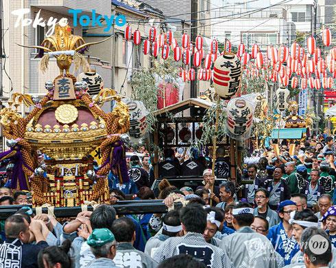 牛嶋神社祭礼, 摂社若宮・大神輿連合宮入り @real Japan 'on