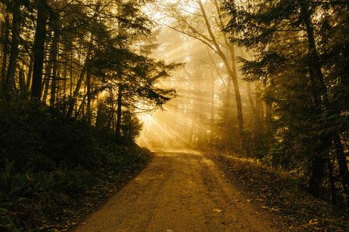 Nach einer Krise erscheint die Welt, der eigene Weg, das Leben in einem anderen Licht
