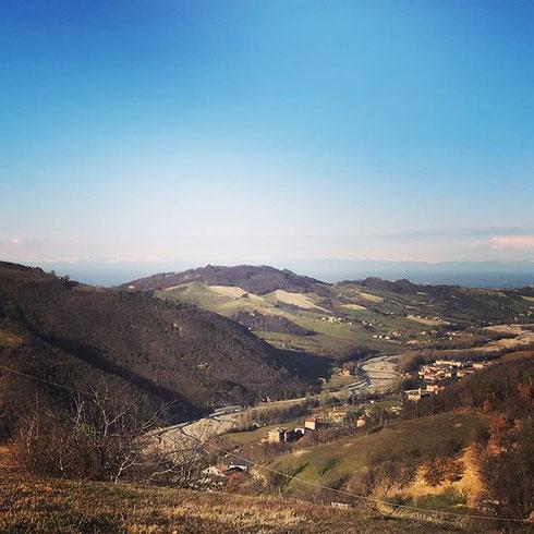 Von hier oben kann man die Alpen sehen.