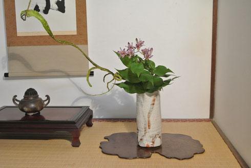 石化柳(セッカヤナギ)と杜鵑草(ホトトギス)