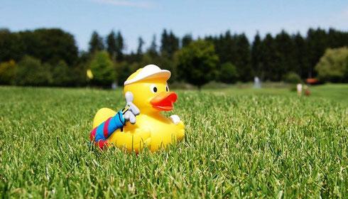 Golf-Ente, Golfwerbemittel, Quietsche-Ente-Golf, Quietsche-Ente Golfer, Quietsche-Ente bedrucken, Golferente, Quietsche-Ente, Golfspieler Ente, Ente Golf