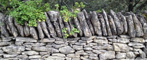Baukasten für Ganztagsschulen. Auf dem Foto eine Natursteinmauer. Bei cbtc können Sie sich aus verschiedenen Modulen das passende Training für Ganztagsschulen zusammenstellen.