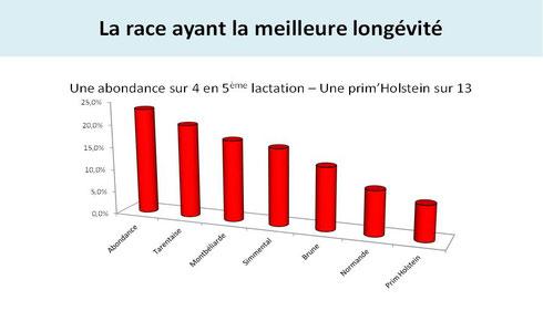 Graphique sur la race Abondance ayant la meilleure longévité