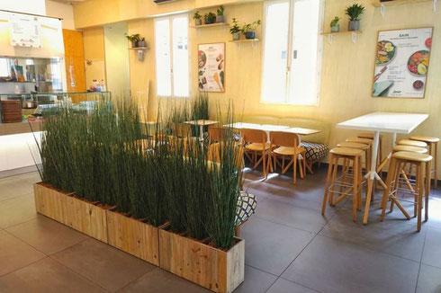 location et entretien de plantes pour un restaurant à Paris