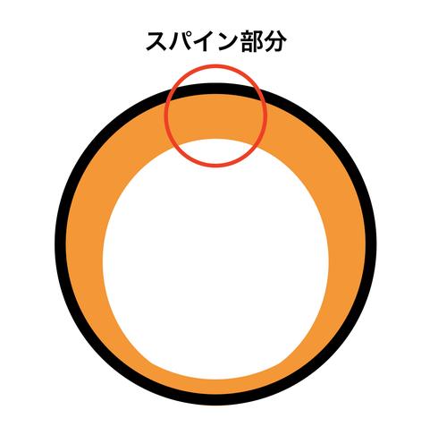 スパイン概略図