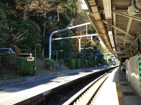 HARAJYUKU : YAMANOTE LINE