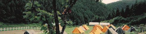 """""""小野田自然塾""""は昭和59年、1984年に設立されました。"""