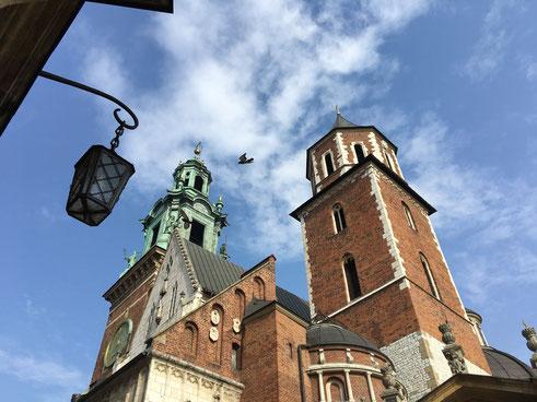 """Colina de Wawel y Ciudad Vieja de Cracovia con """"Salas de Representación"""" en privado y en español"""