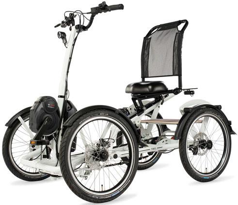 Pfautec Tibo 4 Spezifikationen - Vierrad für Erwachsene - 2020