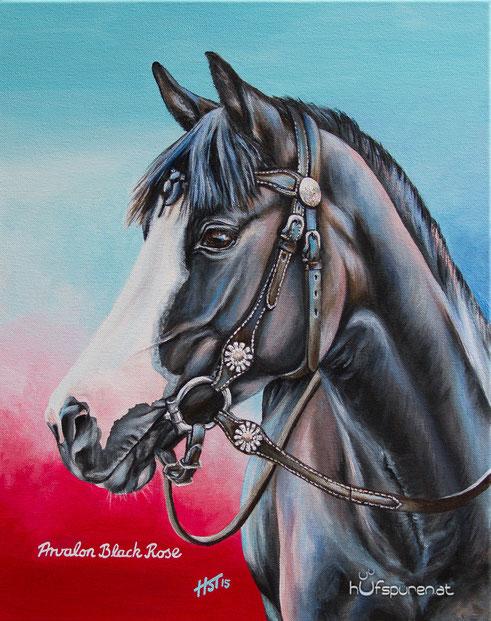 "Pferdegemälde Welsh Cob Rappe: ""Arvalon Black Rose"", Acryl auf Leinwand, 50x40, 2015, Pferdemalerei von Hanna Stemke/Hufspuren, www.hufspuren.com"