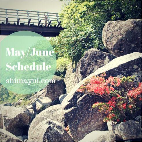 屋久島ガイドツアー、6月のツアー日程表
