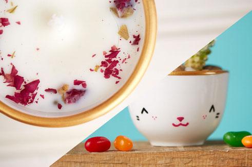 Isabelle, Serif & Glyph, tasse, panda, chat, chandelle, ludique, minimaliste, soucoupe