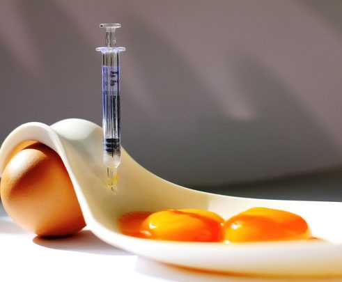 EGGS SYRINGE CHEMICAL FOOD PICTURE CONCEPT