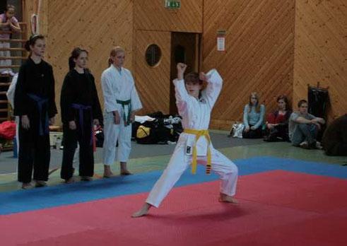 Österreichische Staatsmeisterschaft Bad Schallerbach - TOWASAN Karate Schule München