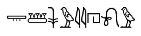 Pays des Shasous ou Shosous de Yahweh, le plus ancien vestige archéologique non biblique contenant le Nom divin en hiéroglyphes. 14e siècle avant J-C. Temple d'Aménophis III à Soleb. Sens de l'écriture: commencer où regardent les figures hiéroglyphiques.