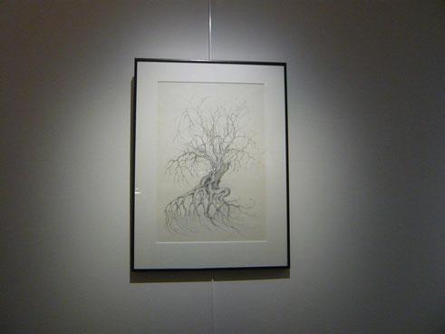 """""""Migration des arbres"""" Dessin 40X55cm ( Nicolas Marquet ) 2016"""