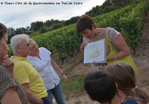 visite-balade-degustation-jeux-vignoble-Vouvray-enfants-famille-Touraine-Vallee-Loire-Tours-Amboise-Rendez-Vous-dans-les-Vignes-Myriam-Fouasse-Robert