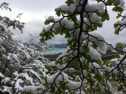 Schneelandschaft - wenn du die drei Angelegenheiten auseinanderhalten kannst, kannst du sie genießen