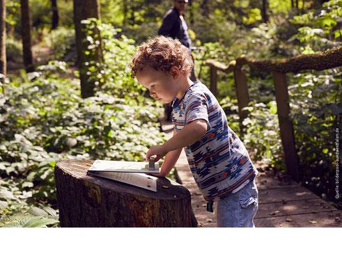 Ausbildung zertifizierter Natur- und Landschaftsführer im 5verBund (Fotoquelle: Quelle: bilderpool-suedwestfalen.de)