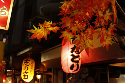 Omoide Yokocho, kleine Restaurants in Tokio