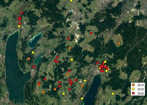 Beobachtungen der Rohrweihe im Landkreis STA 2014-2016