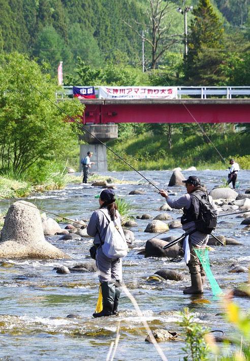 秋神川アマゴ釣り大会