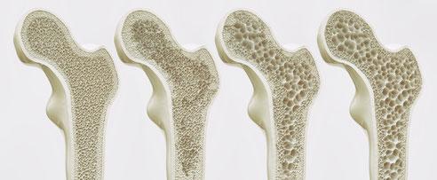 Bild von crevis Bild von freshidea auf stock.adobe.com