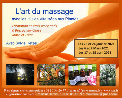 stage massage aux huiles vitalises aux plantes avec hetzel - via energetica, annuaire bien-etre