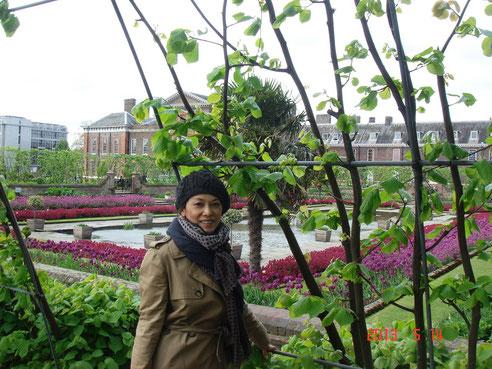 ケンジントン宮殿。 前にある噴水のガーデンは、緑のアーチがつく回りを散策できます。 これからの季節はお花が美しい。