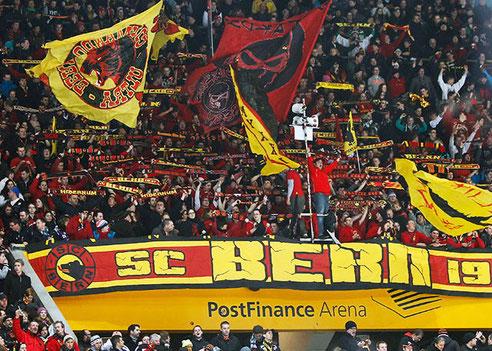 SC Bern Fans