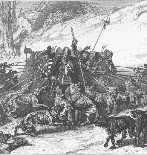 Wolfrudelangriff in der Bretagne
